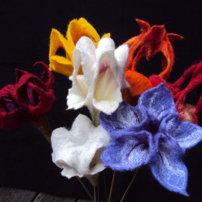 leuchterblüten
